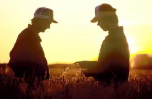 Два брата фермера