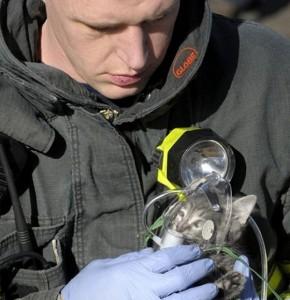 Пожарный спас котенка